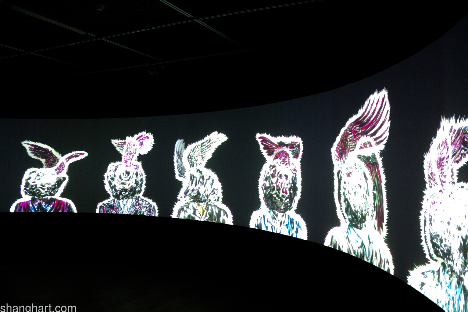 Installation view of Time Vivarium